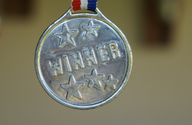 Silver Medal Award that reads WINNER with 5 stars held by a red, white and blue ribbon.