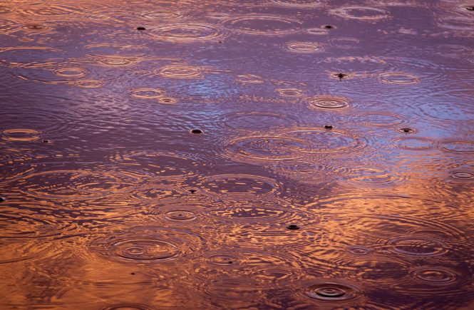 Multiple raindrops splashing in the lake leaving multiple circular rings. Water is deep purple, lavender and gold.