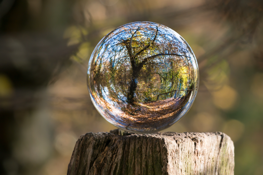 art glass ball with blurred tree reflection sitting on wood post