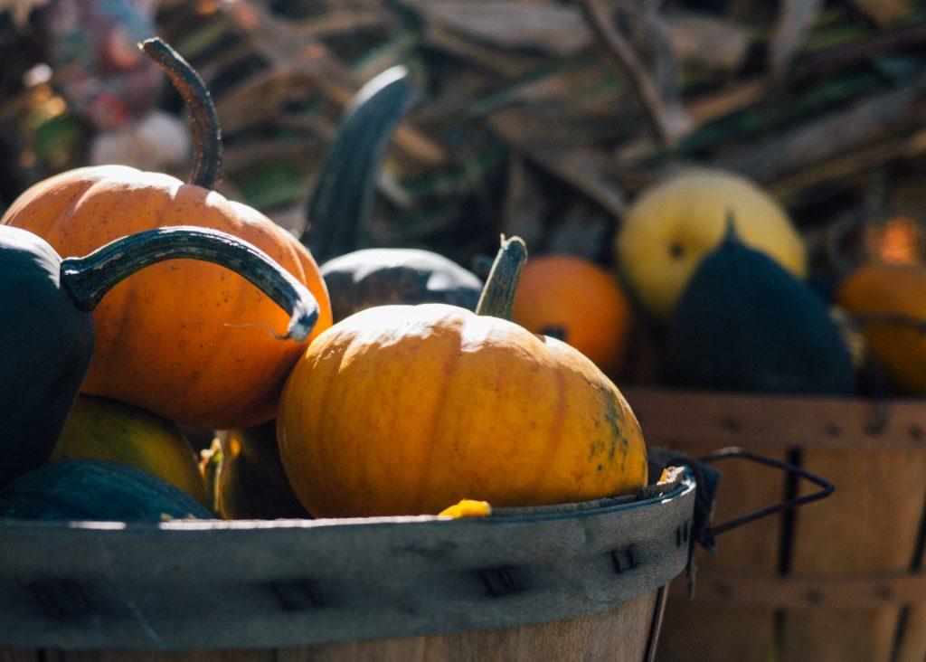 Autumn pumpkins in barrel