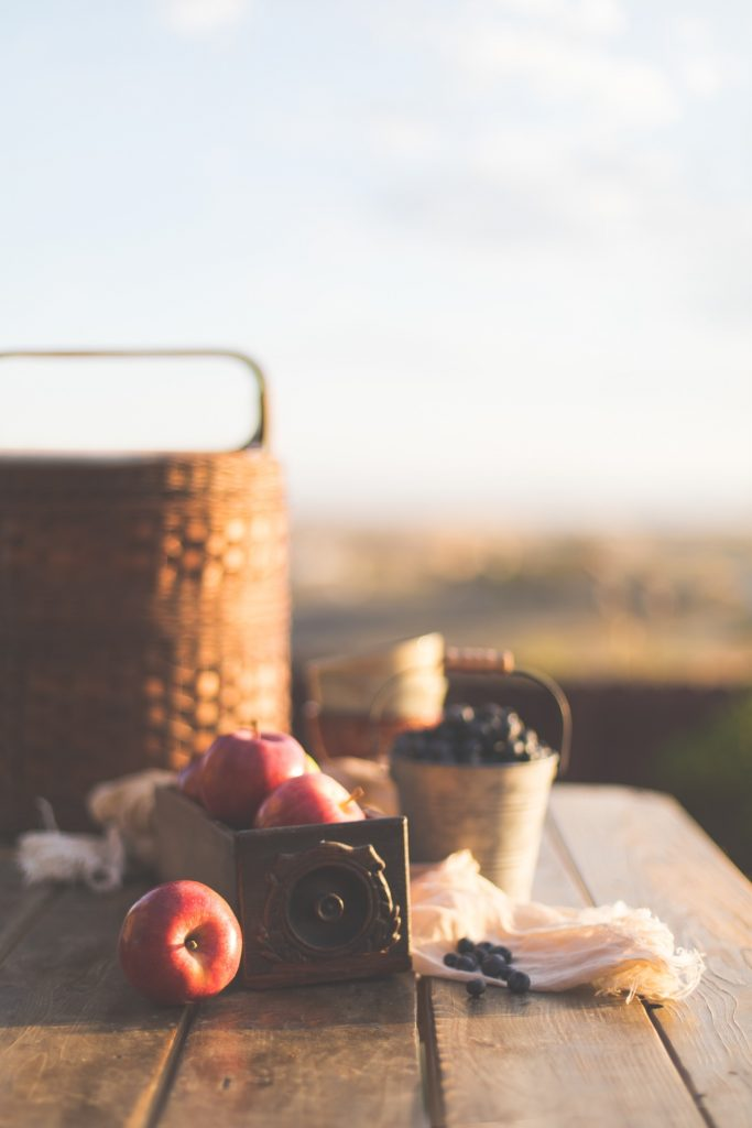 Close up of picnic basket, apples and blueberries on top of picnic table