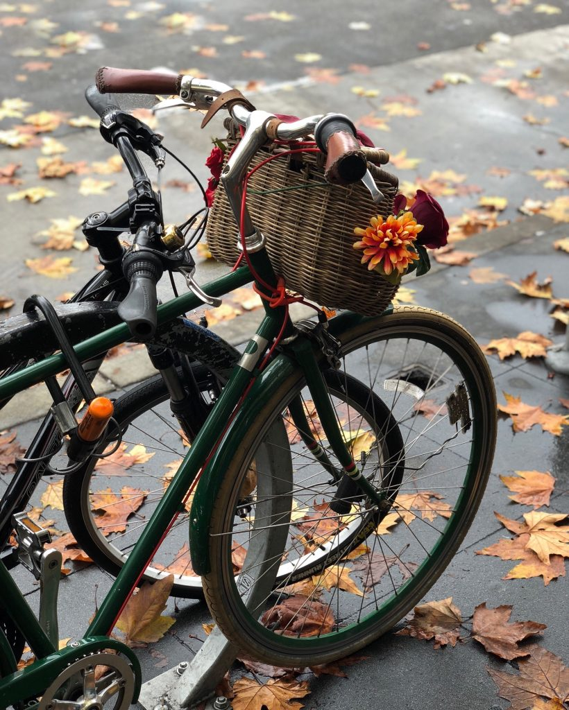 Two bicycles with fall leaves on ground