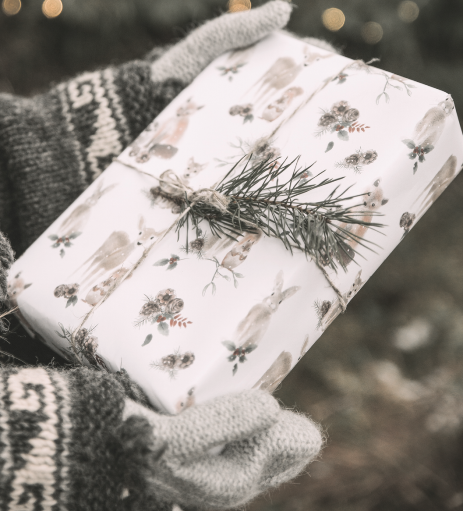 Gift wrapped package with evergreen bow being held by girl with sweater and mittens