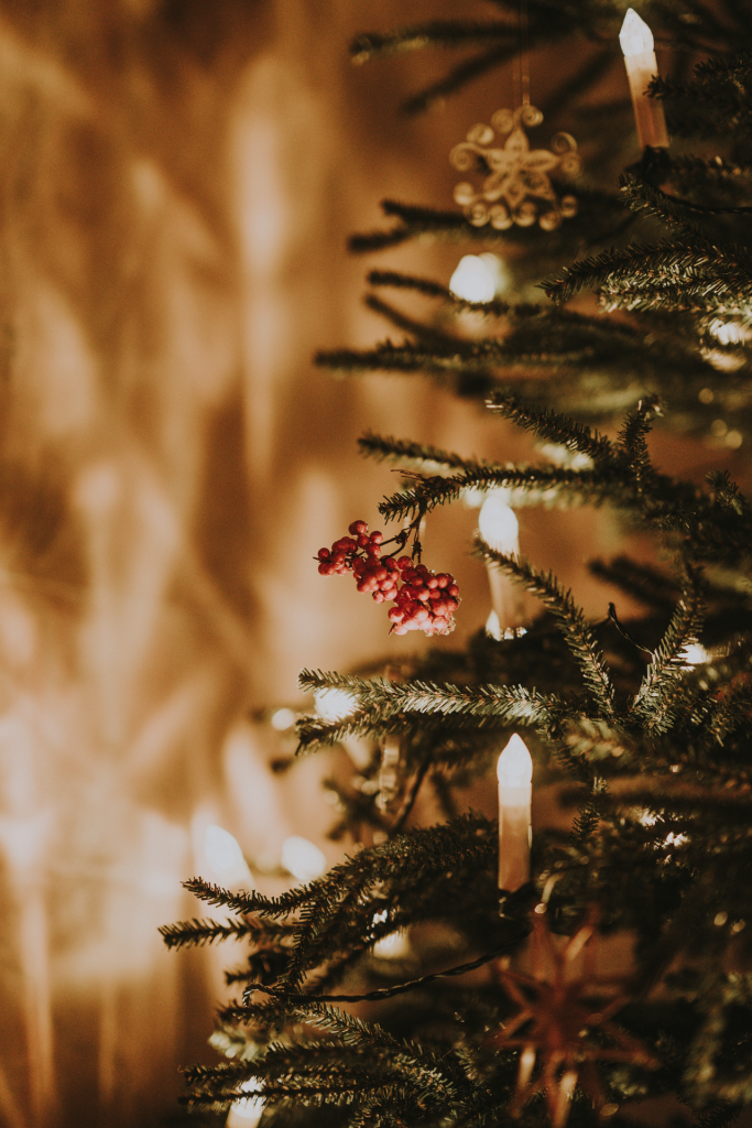 Close up of Christmas tree with candle lights and red berries
