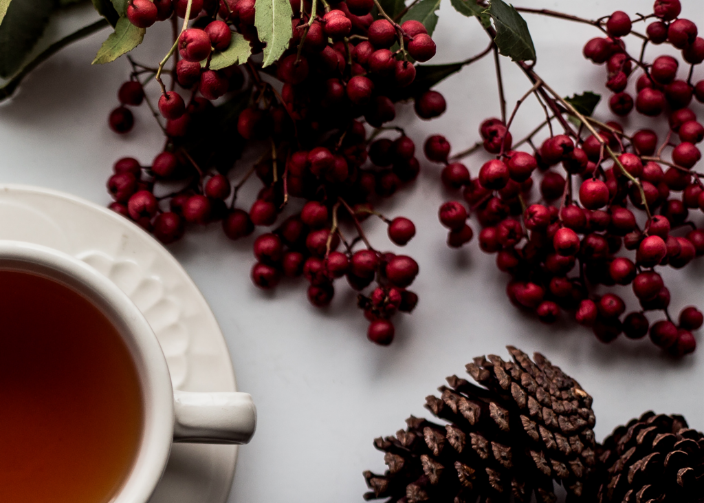Cup of tea, red berries and pinecone