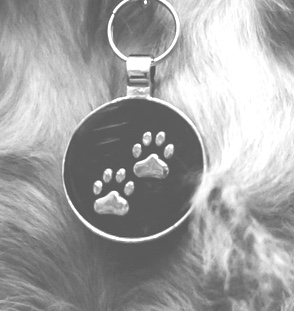 Close up image of dog tag with paw prints