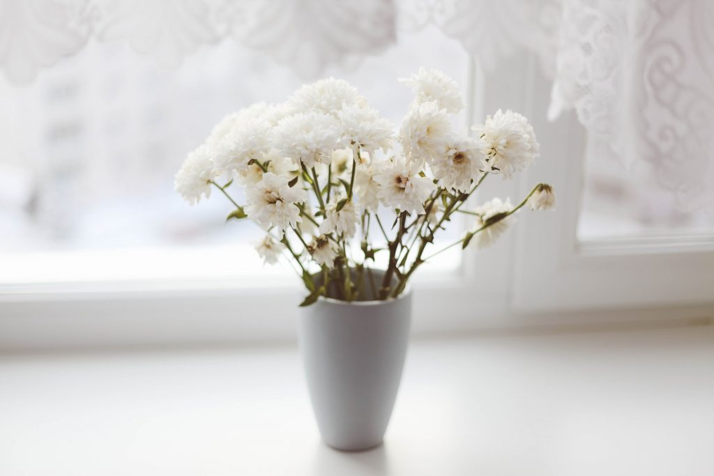 Close up image of vase with white flowers