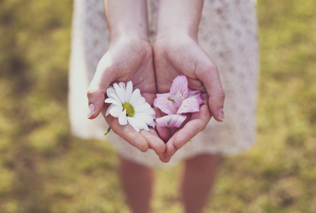 White and pink flowers in girl's hands