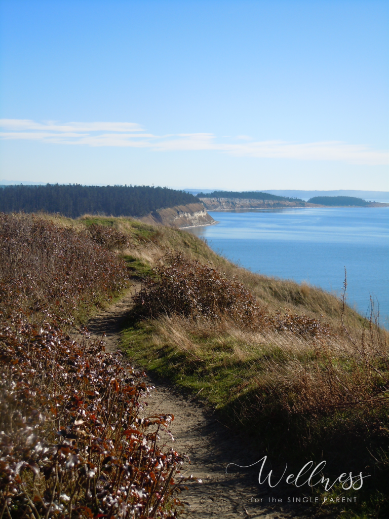 View of trail on bluff overlooking ocean